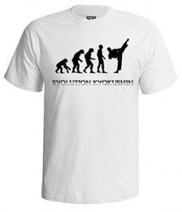 تی شرت کیوکوشین کاراته طرح evolution